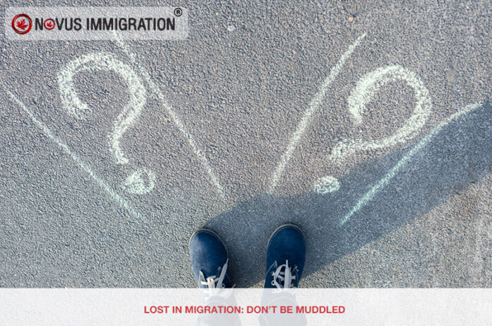 Lost in Migration: Don't Be Muddled